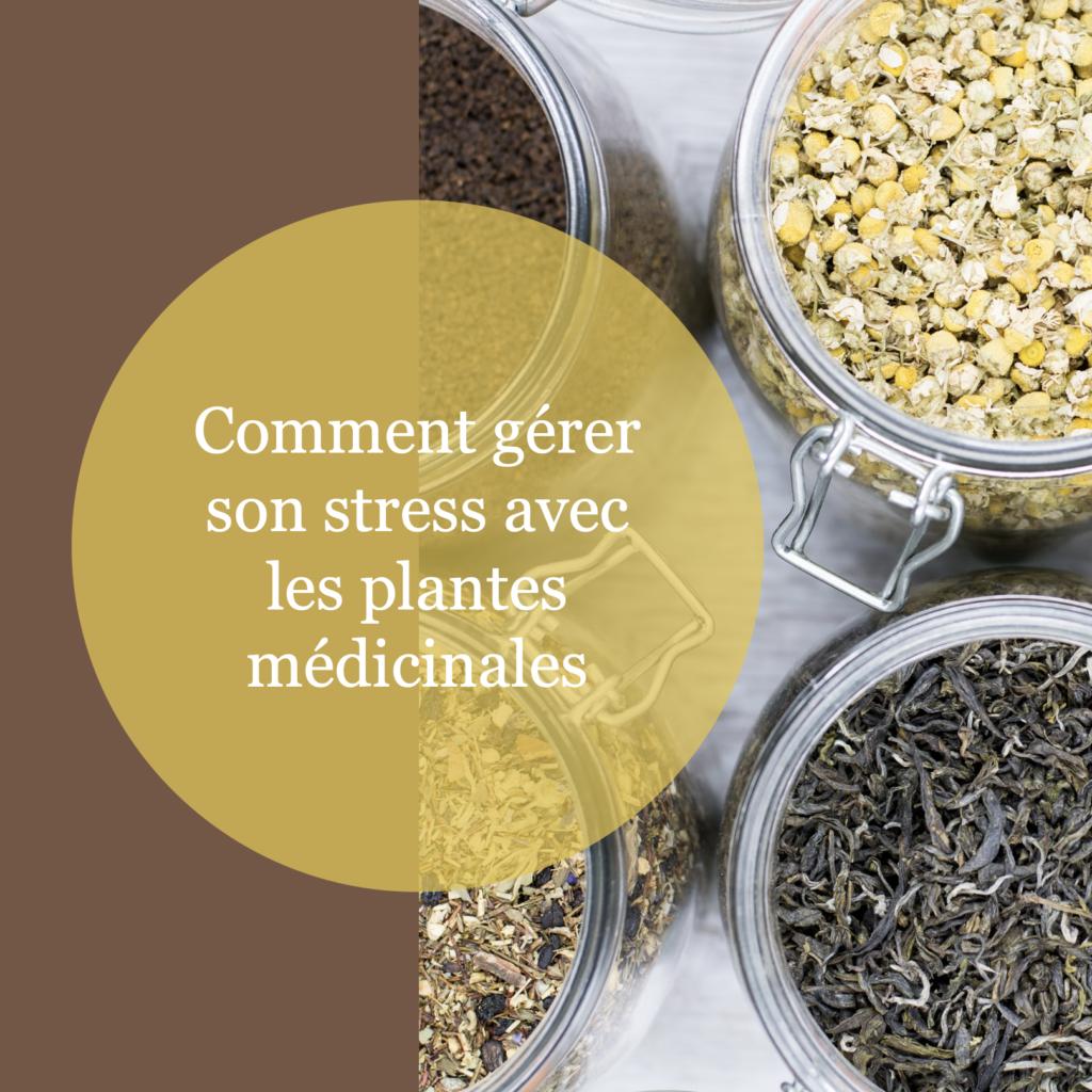 Comment gérer son stress avec les plantes médicinales